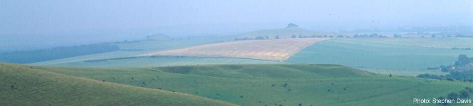 Pewsey Downs - credit Stephen Davis